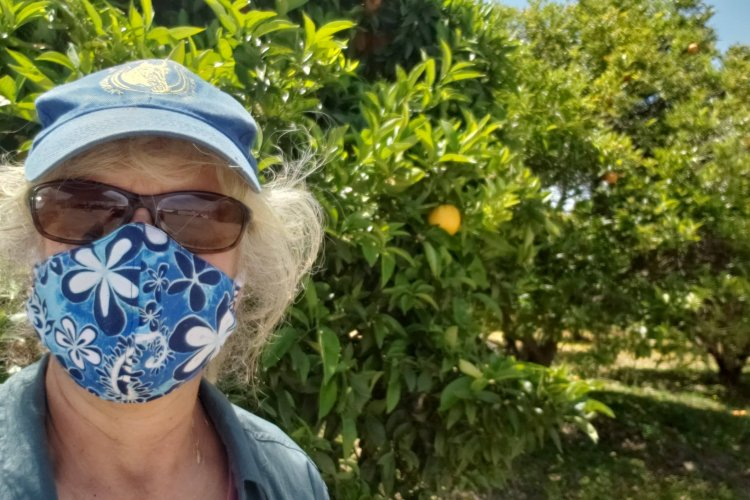 Orange Orchard Volunteer wearing mask